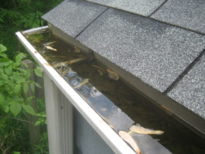 Clogged Gutters - Fall Maintenance Tips by Schulte Roofing